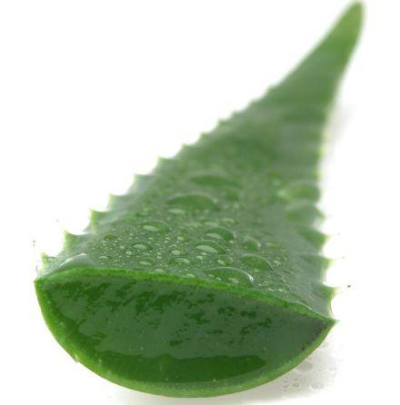 Aloe vera juice - eko