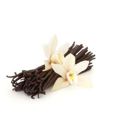Vanilj infuserad i solrosolja (endast storpack)
