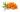 Havtornsolja - Co2, ekologisk