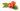 Nyponfröolja - kallpressad, ekologisk